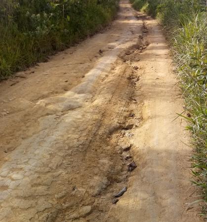 Moradores da zona rural em Laje denunciam abandono em estradas